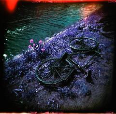 Kanalcykel (Holga 120 SF) (mmartinsson) Tags: negativescan bicycle holga120sf canal holga mediumformat 6x6 lomochromepurple lomography epsonperfectionv700 analoguephotography 120mm film scan malmö skånelän sverige se