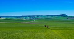 Castilla es (Jesus_l) Tags: europa españa valladolid valledeesgueva camposdecastilla jesúsl