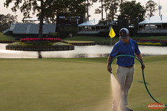 IMG_6671.jpg (AQUAAID) Tags: theplayers tpcsawgrass aquaaid