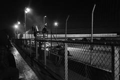 Race day (W A P) Tags: x100f sprintcars dirttrack fujifilm 12800