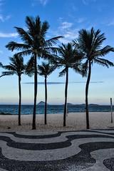 Copagabana (Angelo Petrozza) Tags: copagabana brazil brasil sudamerica rio de janeiro angelopetrozza pentaxk70 palm palme