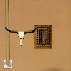Santa Fe Style (suenosdeuomi) Tags: window skull santafe newmexico