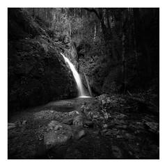 Callicoma Falls VIII (Peter Hill1) Tags: peterhill landscape longexposure hoyandx400 waterfall dorrigonationalpark callicomafalls rocks rainforest river canoneos5dmarkii canontse24mmf35lii