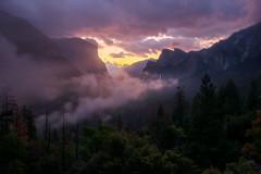 Awakening (Sapna Reddy Photography) Tags: yosemite nationalpark mountain clouds sunrise valley fog mist color nature landscape sky yosemitenationalpark tunnelview usinterior