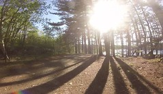 Week18 - Countryside / Woods (iluvgadgets) Tags: intothesun wood countryside bike mountainbike forest shadow gopro hobby 522017 week18 52of2017 117picturesin2017