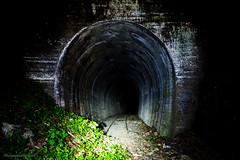 dead track (Keiichi.O) Tags: nikon d800 ニコン 一眼レフ japan landscape nature 風景 東京カメラ部 神奈川カメラ部 ファインダー越しの私の世界 カメラ好きな人と繋がりたい 写真好きな人と繋がりたい loversnippon lovesnippon 1x flickr 500px tokyocameraclub