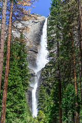 Lower Yosemite Falls, Yosemite National Park (Aleem Yousaf) Tags: yosemite nature landscape united states america national park water fall lower nikon d800 travel hiking outdoor plant trees usa calfornia