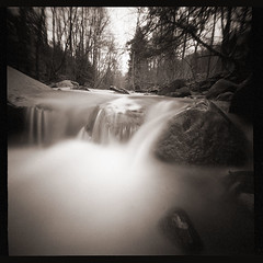 Muddy Creek (DRCPhoto) Tags: pinhole noon6x6camera lenslessphotography kodakbw400cn film muddycreek westvirginia