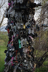 """ The Trunk is Full !! "" (John Neziol) Tags: kjphotography nikon nikondslr nikoncamera outdoor ontario art sculpture old odd shoe shoes tree shoetree"