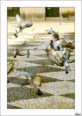 Un niño en paz (V- strom) Tags: niño baby personas people paloma pigeon tomar viajes travel luz light portugal nikon nikon2470 nikon50mm nikon105mm paz pax texturas textures urbana urban portrait retrato
