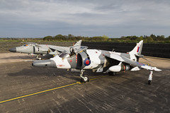 BAe Sea Harrier FA2 and Hawker Siddeley Harrier GR3 - 2 (NickJ 1972) Tags: raf cosford night nightshoot photoshoot photo shoot photocall timeline events tle 2017 aviation hawker siddeley harrier gr3 arctic xz991 07 bae britishaerospace fa2 zh796 l001