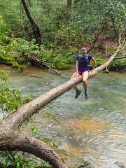 Cumberland Trail Run (11 of 34) (aaron_rinn) Tags: tenessee tree toppers team challenge 2017 cumberland trail