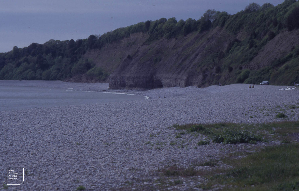 Bull Cliff (Service Tree) from Cold Knap beach. Barry. 2001