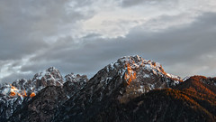 Picco di Valandro / Dürrenstein (2842m) e Monte Serla / Sarlkofel (2378m) - Trentino-Alto Adige - Italia (Felina Photography) Tags: montagna dolomiti dobbiaco toblach vallesansilvestro wahlen piccodivalandro dürrenstein monteserla sarlkofel trentinoaltoadige italia italy dolomites dolomieten dolomiten alpenglow alpenglühen sunset tramonto zonsondergang avondlicht crepuscolo twilight light luce vista view dolomitidibraies südtirol sudtirolo