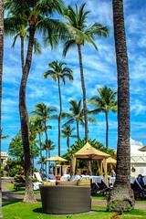 DSC03914.jpg (jaғar ѕнaмeeм) Tags: kihei hawaii unitedstates us maui 2017 spring wailea fairmont