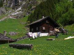 Idyllic place to relax (madbesl) Tags: österreich austria europa europe nationalparkhohetauern berge mountains gebirge hütte hut idylle idyllic idyllisch landschaft landscape oberpinzgau panasonic lumix fz50