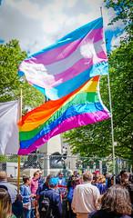 2017.05.03 #LicenseToDiscriminate Protest, Washington, DC USA 4434