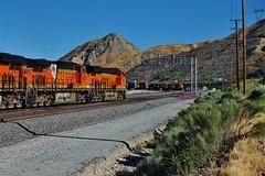 Taking The South Track (Official$uchainzTV) Tags: bnsf bnsfrailway burlingtonnorthernsantafe cajonpass cajonsubdivision cajonstationca ztrain intermodal widecab widecabs railfanatlas ge gelocomotive generalelectric gelocomotives gevo es44c4 c449w dash944cw dash9 california