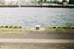 FED-2 × Fujicolor100 (Amigo Film Photography) Tags: fed2 fed2b フェド2 filmcamera filmphotography film 35mmfilm 35mmfilmcamera russiancamera ロシアカメラ ロシアレンズ フィルム写真 フィルムカメラ レンジファインダー