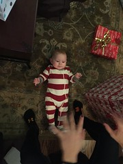 "Kai on Christmas Eve • <a style=""font-size:0.8em;"" href=""http://www.flickr.com/photos/109120354@N07/34430543896/"" target=""_blank"">View on Flickr</a>"