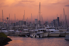"""Afterstorm Delight"" (TIA International Photography) Tags: seattle washington pugetsound elliottbay marina pacificnorthwest sunset evening storm stormy boat sailboat yacht sailing reflection orange sky skyline skyscraper downtown cbd spaceneedle urban landscape bay water coast coastline shore shoreline delight tosinarasi tia ©tiainternationalphotography weather conditions"