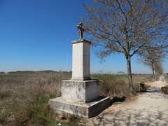 Path between Sahagun and El Burgo Ranero (amgirl) Tags: meseta spain sahaguntoelburgoranero wednesday april12 day14 walking