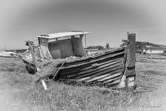 Pandora (Explored 11/06/2017) (crezzy1976) Tags: nikon d3300 crezzy1976 photographybyneilcresswell blackandwhite monochrome greyscale boat outdoors vessel transport vehicle pandora wirral heswallshore heswall boatyard