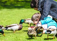 JOY! (I was blind now I see!) Tags: duck park boy feeding mum beautifulexpression mother child bond joy bokeh love