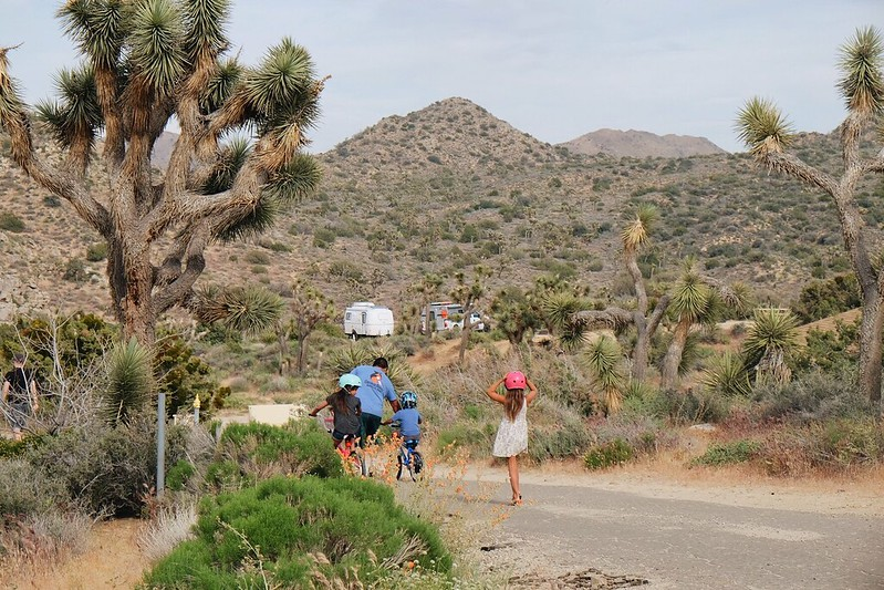 Blog Joshua Tree April 2017
