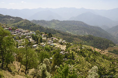 Pokhari (bNomadic) Tags: kartik swami temple garhwal uttarakhand pokhari rudraprayag karanprayag ganesha shiva himalayas himalayan panorama gangotri kedarnath badrinath kumaon ganga sacred hills mountains landscape travel bnomadic