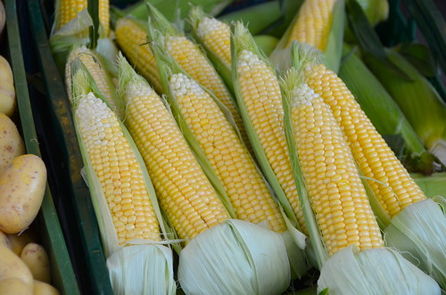 Farmfresh corn