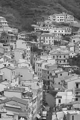 Simple (DanAie) Tags: bw black white blackandwhite bnw street streetphotography italia italy liguria travelphotography travel strada case riomaggiore cinqueterre composition composizione