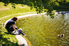 """Day 130/365 - """"Story People"""" (Little_squirrel) Tags: 365the2017edition 3652017 day130365 10may17 people child mother motherandchild park ducks exploringtheworld everythingnew lake water nature explore play warm green storypeople sunshine moment"""