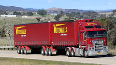 Wettenhall's Kenworth pairing. (Jungle Jack Movements (ferroequinologist)) Tags: drw wettenhall wettenhalls b double semi trailer red pair yass hume highway freeway bull bar vv 03 jj 1jr 4tg kenworth cabover truck train tractor prime mover diesel smoke injected motor engine driver cab cabin brake forward reverse wheel wheels exhaust loud rumble beast registered bitumen paint metallic hood litre cubic inches hp kw kilowatts horsepower gear gears shift haul freight trucker transport carry carrying moving shipping delivery bulk lorry hgv wagon nose
