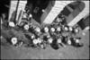 Coffee break (Franco & Lia) Tags: street bar fotografiadistrada photographiederue padova analog analogico pellicola film argentique nikonl35af2 ilford fp4 bellini hydrofen studional epson v500 piazzadelleerbe