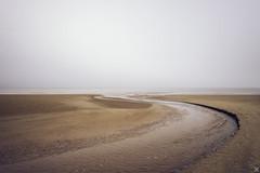 Brouillard (tjwsphotographies) Tags: nikon nikond610 2485mm 24mm d610 brouillard fog brume mer borddemer divessurmer divais divaise dives plage beach seascape beachscape cabourg calvados cabourgmonamour cabourgplage plagedecabourg paysage landscape sable sand maréebasse france nature normandie bassenormandie printemps avril vagues océan eau littoral côte