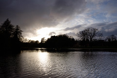 Osterley Park & House (lsullivanart) Tags: osterleypark osterleyparkhouse fuji fujifilm fujix fujix70 fujinon landscape outdoor hill hills fell rural fields parks streams rivers lakes clouds weather moody dramatic atmospheric cloudy overcast valleys views sun sunlight sidelight bloom starburst sidelit sunrise sunset sky scenery scenic goldenhour natural beautiful nationaltrust spring winter europe uk unitedkingdom britain england national british surrey southeast homecounties southern