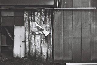 Leica M4-p+Leica M Summicron 50mm