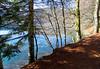 Auvernia.Lac Pavin. p41017 (710) (joseluisgildela) Tags: auvernia lacpavin lagos esenciadelanaturaleza árboles