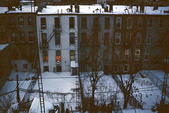 (np486) Tags: new york brooklyn carroll gardens apartment buildings snow backyards peagam