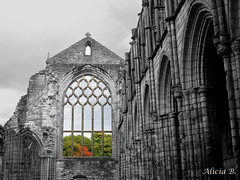 Abadía de Holyrood (Alicia B,) Tags: edimburgo edinburgh escocia holyrood arquitectura abadía