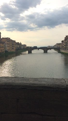 View of Florence 3