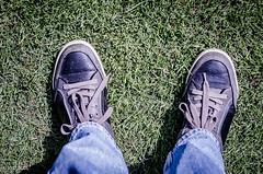 Stand Tall! (BGDL) Tags: lightroomcc nikond7000 bgdl niftyfifty afsnikkor50mm118g garden memyselfandi kennethcole shoes saturdaytheme flickrlounge