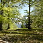 Mittenwald - auf dem Weg zur Korbinianhütte thumbnail