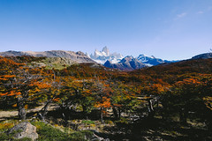 DSCF2322 (/mv) Tags: patagonia argentina chile southamerica fujifilm fujifilmxt2 landscape adventure explore nationalpark nature travel intothewild torresdelpaine elchalten fitzroy mountain