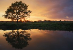 Still Life (Ashley Hemsley) Tags: serene outdoor beauty nature season spring afternoon time sunset color flickr explore view landscape waterscape reflection reflect water ouse lewes river east sussex united kingdom britain canon camera 5d dslr capture moment light cloud sky orange blue tree siluet silhouette photography walk trip visit tourist location local travel fields countryside peace