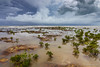 Incoming tide (NettyA) Tags: 2016 australia darwin nt nightcliff northernterritory sonya7r clouds coastal incomingtide landscape mangroves rockplatform rocks sea seascape storm water wetseason