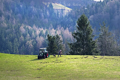 The peasant's work in spring - (rotraud_71) Tags: spring berchtesgadenerland mountainmeadow people trees bavaria germany forest mountain scenicsnotjustlandscapes