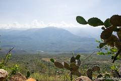 Cañon del Río Suárez (takashi_matsumura) Tags: cañon del rio suarez barichara santander colombia landscape nature panorama sigma 1750mm f28 dc ex hsm os nikon d5300 ngc