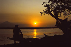 Sunset over Bali seen from Gili Air (Thomas Roland) Tags: summer nikon f301 kodachrome 64 indonesia travel rejse lombok gili air trawangan orange gunung mount rinjani beach strand water coast bali self portrait tree silhouette